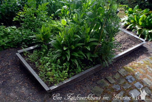 Schneckenschutz, Schnecken im Garten, Kräuterbeet