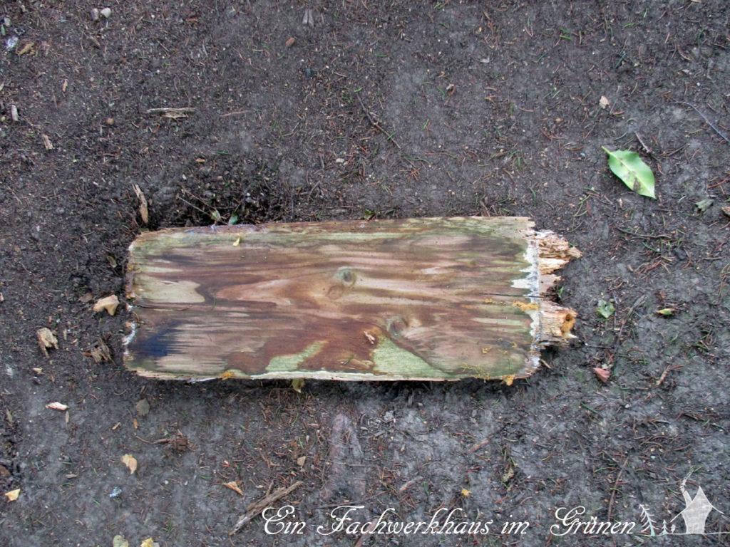 Morsches Holz