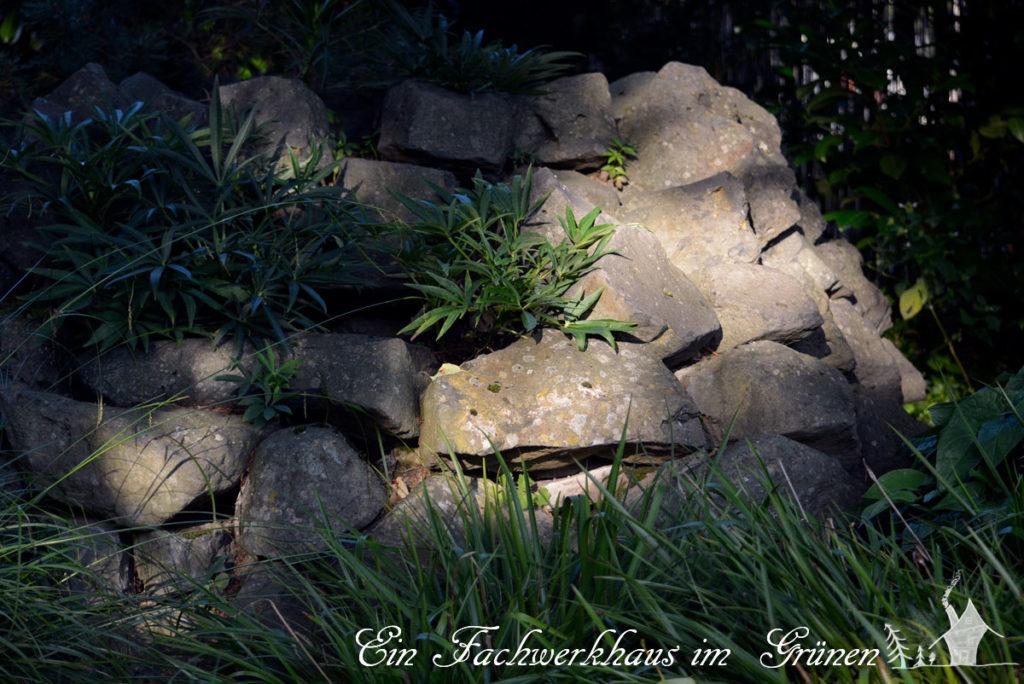 Trockensteinmauer, Basalt