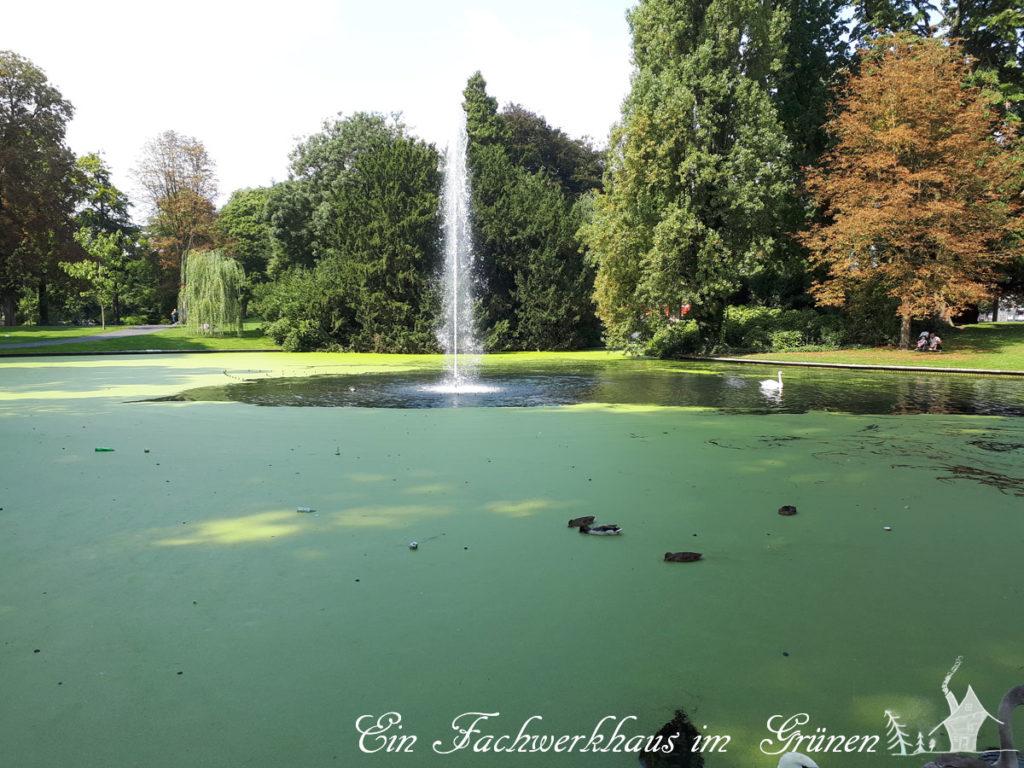 Breda, Springbrunnen
