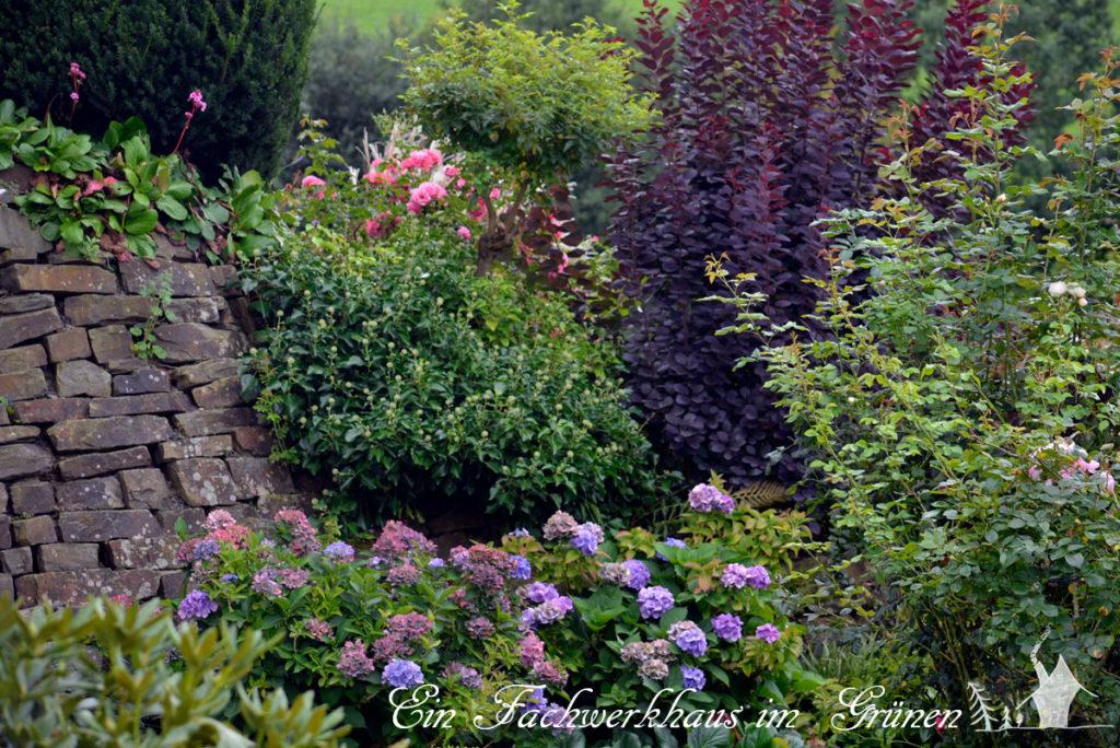 Trockenmauer im Garten