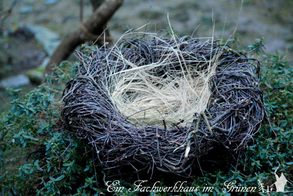 Heimeliges Nest