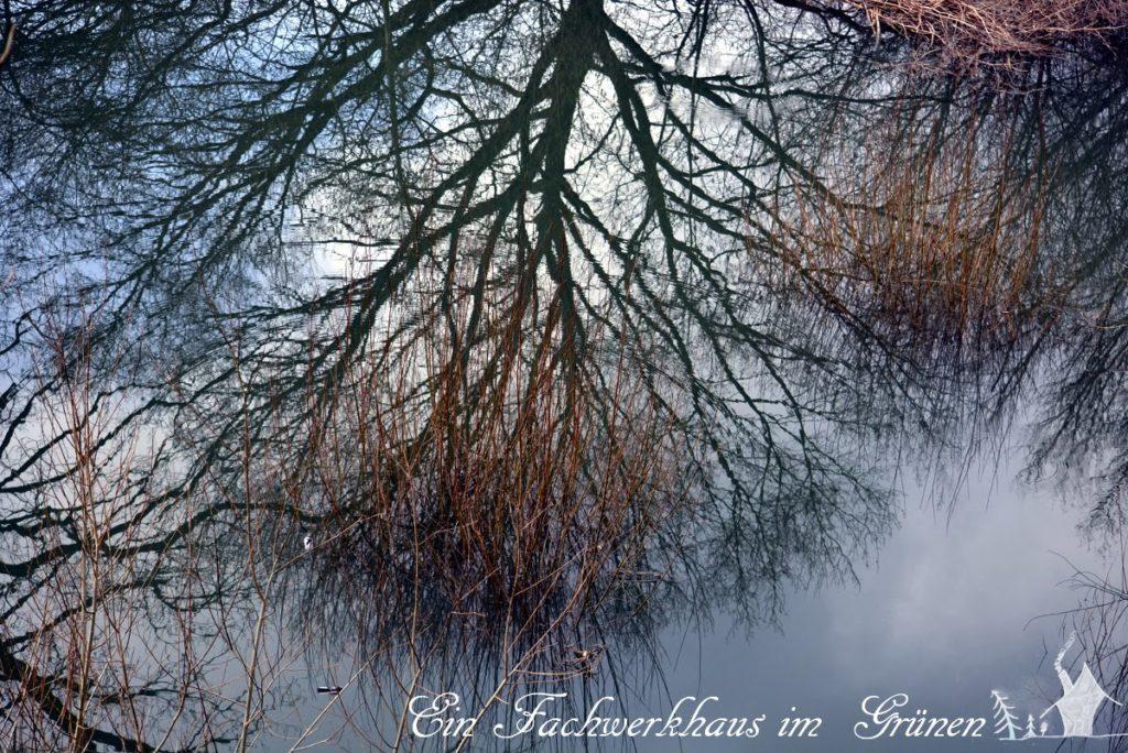 Siegaue, Ueberschwemmung