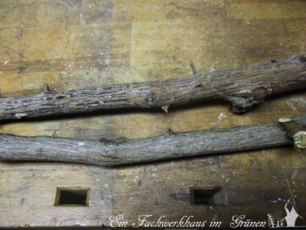 Rosenholz für unseren Pilz
