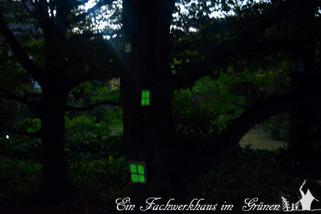 Der verwunschene Garten.