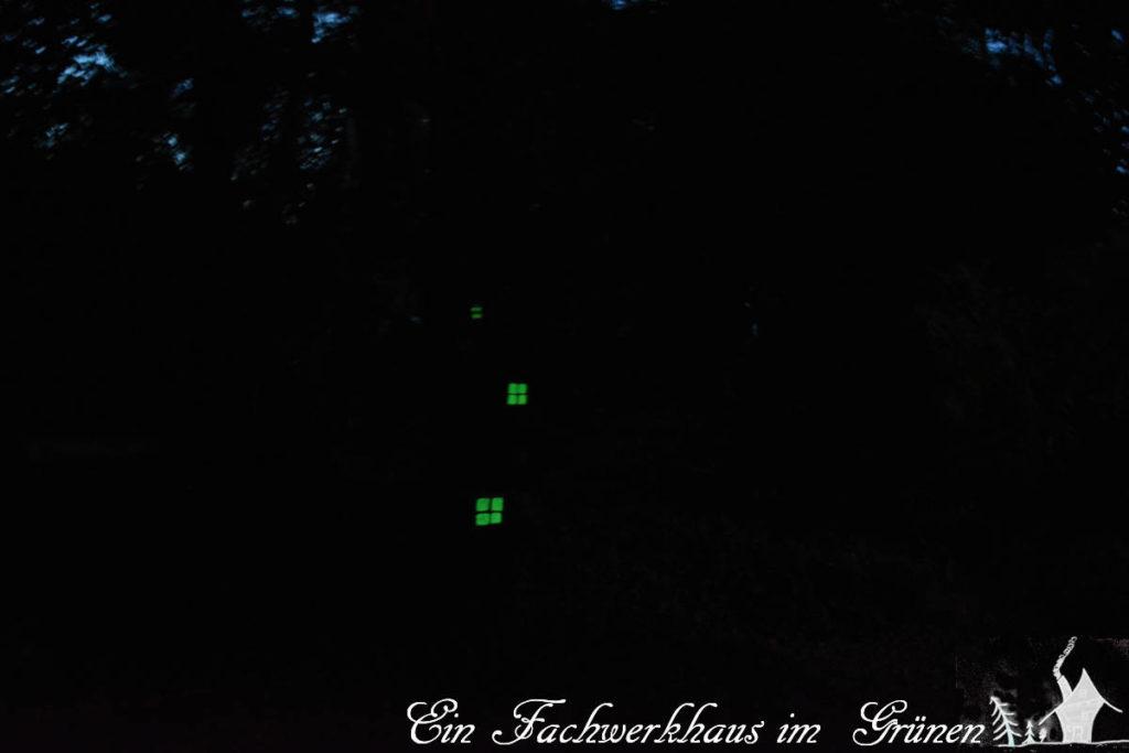 Der verwunschene Garten Nachts.