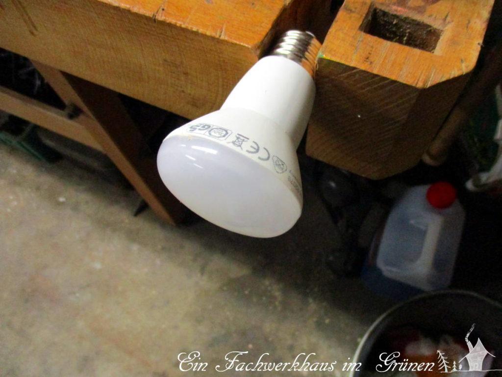 Wie umweltfreundlich sind LEDs eigentlich?