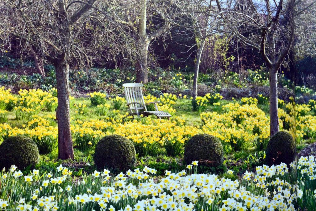 Ein Garten ist niemals fertig. Das Buch überzeugt auch mit sehr schönen Bildern.